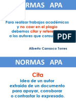 APA estudiar.pdf