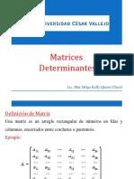 Matrices y Determinantes Diapo