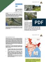 physical-setting.pdf