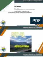05_NIC_41_Agricultura_NIC_16_Activos_Portadores_Alexei_Estrella_SNC2017.pdf