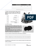 Santillana Cn5 Ficha Avaliacao 4
