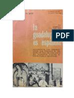 Del Rio Gabriel - La Guadalupana Es Espa±ola