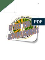 2013  ACC.docx