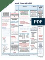 Antropología - Esquema de la Unidad 3.pdf