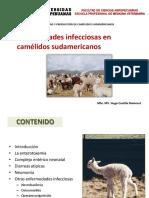 10. Enfermedades Infecciosas en CSA