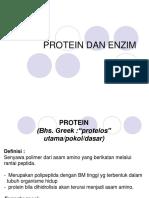 Protein Enzim Plain