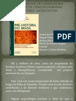 Pré-História Do Brasil.
