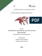 Estefanny Peña -Informe  Discapacidad Fisico-motora