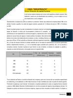 Lectura 2 Caso industrialita.pdf