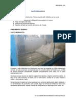 Informe Salto Hidraulico