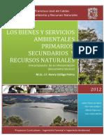 Los Bienes y Servicos Ambientales Primarios Una Propuesta de Su Interpretacion y Aplicacion Practica1