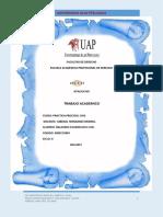 trabajo monografico practica procesal civil.docx