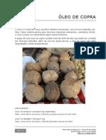 113 Extracao Oleo de Coco