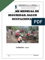 Informe Seguridad Mensual de Febrero 2017