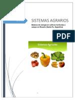 Sistemas Agrarios Produccion de Energia