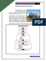 231447528-Informe-de-Extraccion-de-Olivo-y-Aceites-Esenciales.docx