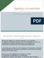 Aparato Digestivo y La Nutrición