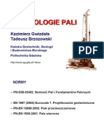 Technologie_pali_