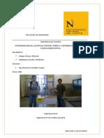 Iinforme Centro de Presion