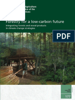 Forestry for a low-carbon future