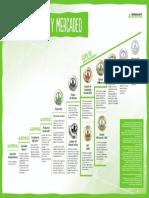 Escalera del exito HBL pdf