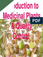 EIS - Obat Herbal