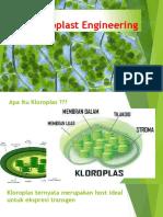 Chloroplast Engineering