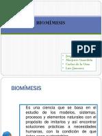 Biomisesis PDF