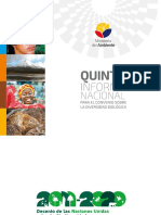 Quinto Informe Baja Final 19.06.2015
