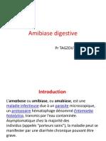 Amibiase Digestive