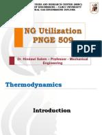 NG Utilization 509 Dr. Hindawi Salem
