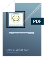 ENSAYO TDAH DORA MARIA maestria.pdf