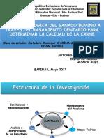 Presentacion Para Proyecto de Jose Antonio