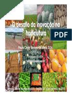 AULA-04-DESAFIO DE PRODUZIR HORTALIÇAS E ALIMENTO PARA A POPULAÇÃO.pdf