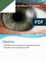 Cómo Se Produce La Visión y Audicion.ppt (1)