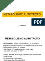 12. AUTOTROFOS