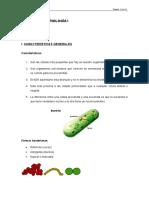 Tema III. Bacteriología i