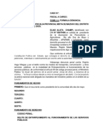 DENUNCIA.docx