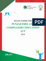 Punjab Shadow Rules