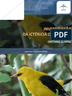 apresentaoinvestigaoictericaobstrutiva-101116215245-phpapp02.pdf