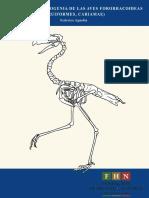 Sistematica y Filogenia de Aves Fororracoideas