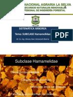 Clase 1 Hamamelidae 2017