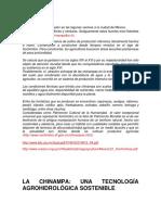 CHINAMPAS.docx