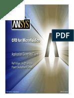 FSI-Bio-FluentKroeger.pdf