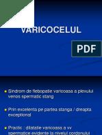 varicocel.ppt