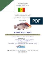 WASSE WALO 2.doc