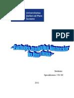 231908925 Evolutia Auditului Financiar in Romania