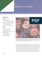 Aminoacidos Petidos y Proteinas (1)