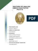 LABORATORIO DE ANALISIS QUIMICO CUALITATIVO.docx