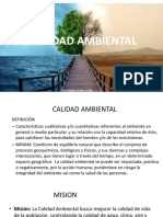 Cap Point Calidad Ambiental